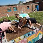 Children with hands in the garden soil